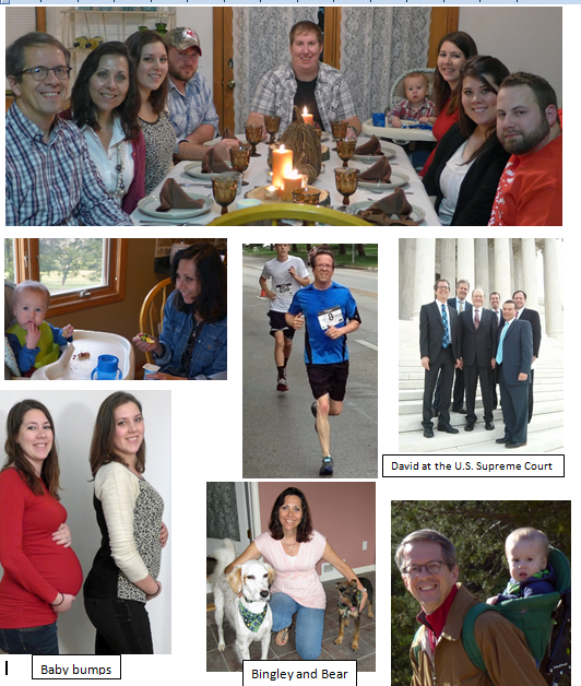Pictures from the Barfields year 2014